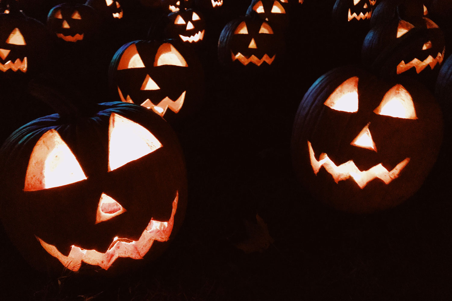 7 Spooky Good Music Marketing Tips To Try